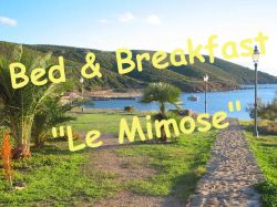 Bed and Breakfast Le Mimose
