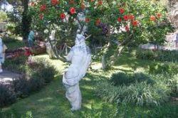 Servizi giardinaggio pronto intervento casa