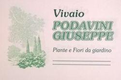 Vivai Podavini Giuseppe