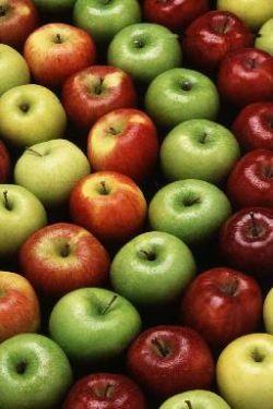 Beneform nutrizione - Dott.ssa Barbara Trani -