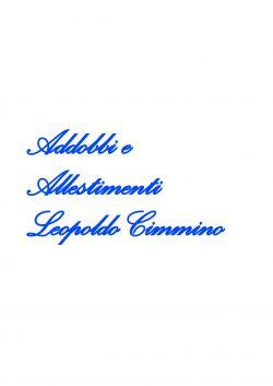 Cimmino Leopoldo
