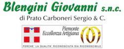 Falegnameria Blengini Giovanni s.n.c. di Prato Carboneri Sergio & C.
